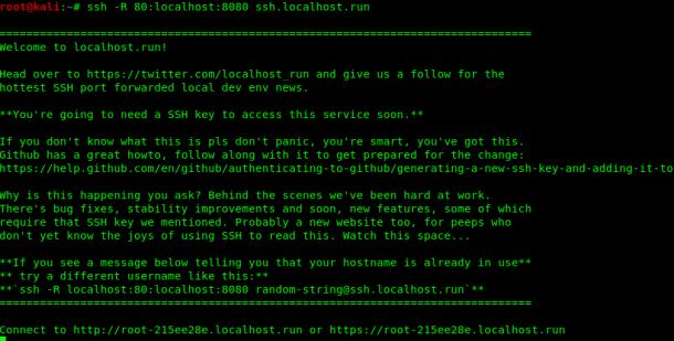 localhost.run port forwarding